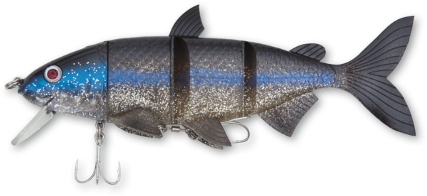 Quantum Junker DS (keuze uit 12 opties) - White Fish