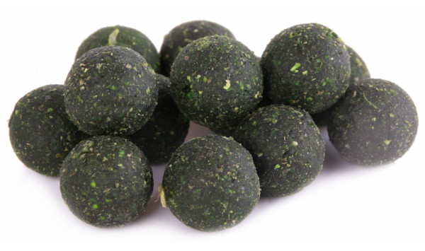 10kg Verse Ready Made Boilies in 8 smaken - 10kg Green Lipped Mussel 20mm