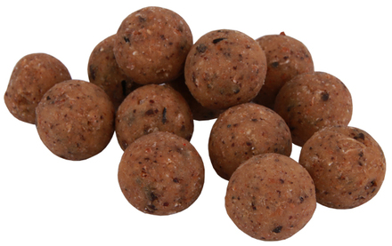 Premium Readymade The Nutz Boilies in 15 of 20mm (keuze uit 4 opties)