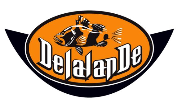 Delalande Picol'Eau 18cm 28g (keuze uit 9 opties)