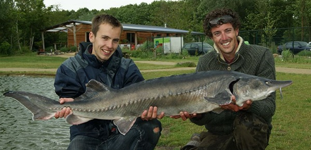 "All inclusive arrangement ""vissen op karper, meerval en steur"" bij Toms Creek Fishing Adventure"