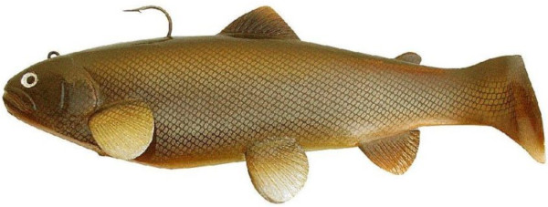 Castaic Swim Bait Trout (keuze uit 6 opties) - Carp
