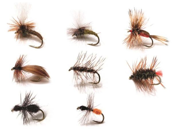 Kinetic Dry Flies, 8 stuks (keuze uit 2 opties) - Dry Flies 2