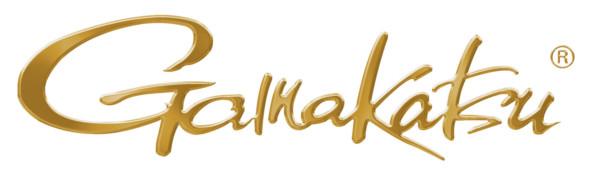 Gamakatsu Gold Logo Hoodie (toutes tailles disponibles)