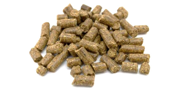 Bulkverpakking 20kg Baby Corn Mais Pellets in 3 of 8mm (keuze uit 6 smaken)~~ - Vismeel met maar liefst 20% vismeel