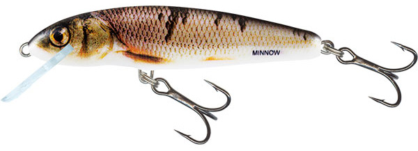 Salmo Minnow 6cm Floating (keuze uit 3 opties) - Wounded Dace
